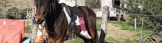 INTÉGRAAL, 3 ans, a fait ses grands débuts de gentil poney pour enfants !